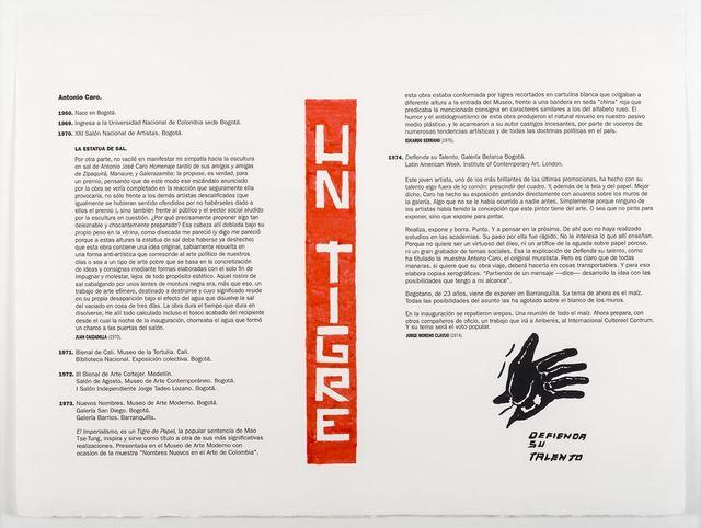, 'Un Tigre,' 2017, Casas Riegner