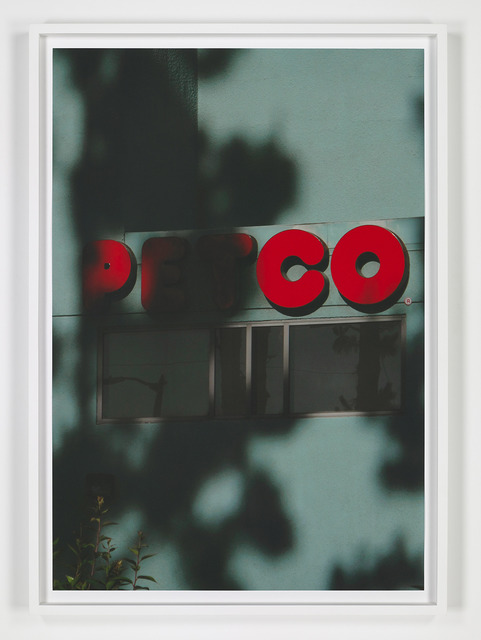, 'E.S. Petco,' 2013, The Journal Gallery