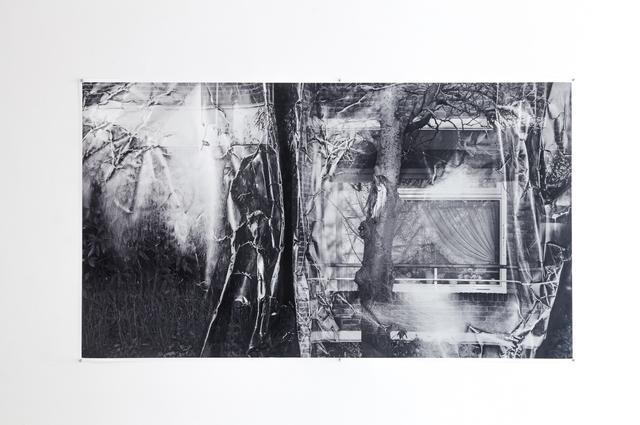 , 'Crumpels Series | a window and a damaged tree,' 2016, DAS ESSZIMMER