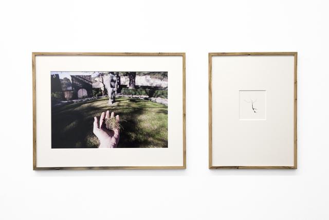 , 'ZERSETZUNG,' 2016, Pechersky Gallery