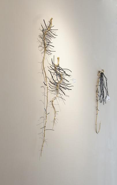 Dalya Luttwak, 'Seedlings of Soybean', 2015, Sculpture, Painted Steel, Galleria Ca' d'Oro