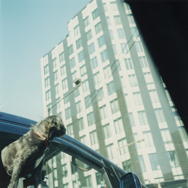 , 'Untitled,' 2008, MIYAKO YOSHINAGA