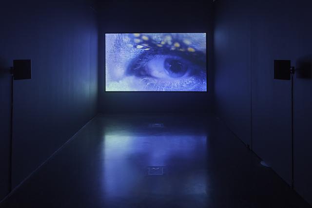 , 'Dicta,' 2017, Kasia Michalski Gallery