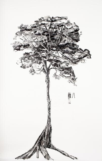 """, '""""Washboard Tree"""" Mersawa / Anisoptera marginata,' 2009, Ota Fine Arts"""