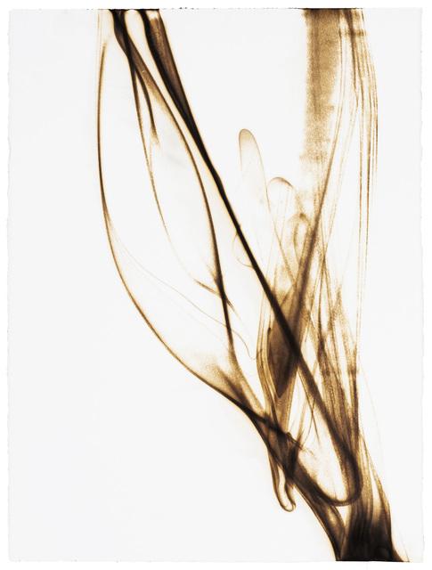 , 'Trace 8314,' 2014, Winston Wächter Fine Art