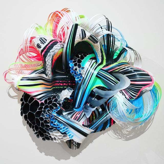 , 'Paroxysm Bloom II,' 2016, Hashimoto Contemporary