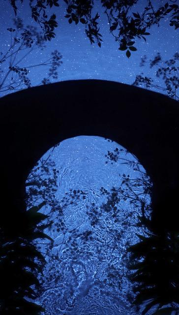 , 'Star Field Bridge,' 2013, Danziger Gallery