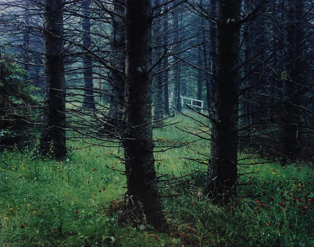, 'G.S.H.I., Maine (Great Spruce Head Island),' 1965, Scheinbaum & Russek Ltd.