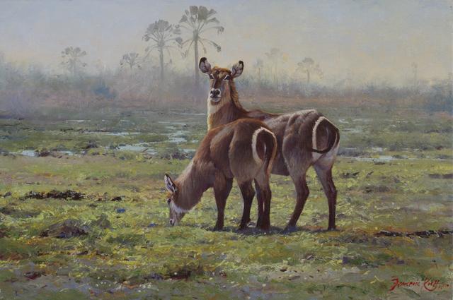 , 'Okavango Waterbuck,' , Trailside Galleries