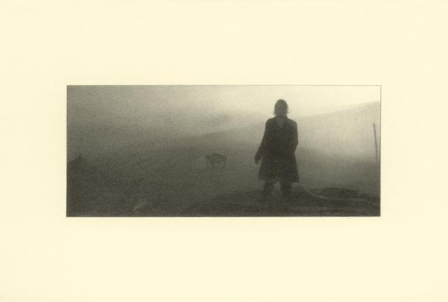 , 'Mist,' 2014, Kristin Hjellegjerde Gallery