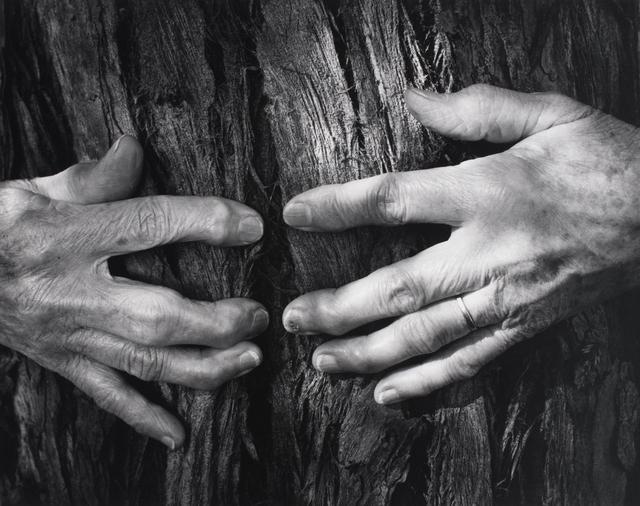 , 'Woman's Hands, 1956,' 1956, Ryan Gallery