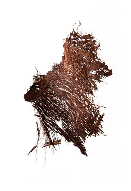 , 'Palm #1,' 2013, Rick Wester Fine Art