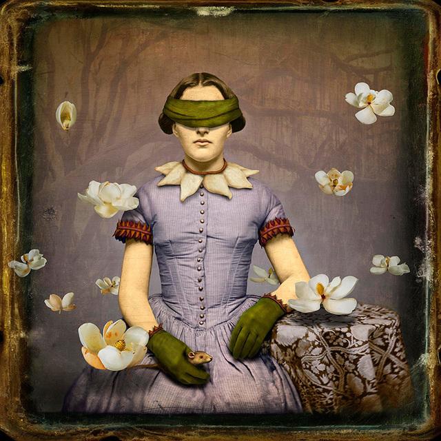 Maggie Taylor, 'Magnolia charmer', 2009, photo-eye Gallery