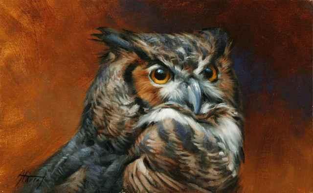 , 'Great Horned Owl Portrait,' 2018, Sorrel Sky Gallery