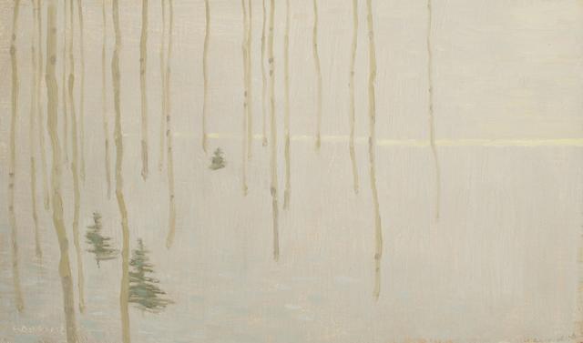 David Grossmann, 'Tree Patterns with Fading Winter Light', 2017, Gallery 1261