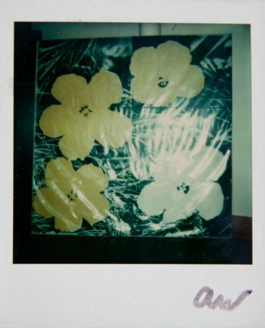 Andy Warhol, 'Andy Warhol, Flowers Silk Screen Print, Polaroid Photograph, 1976', 1976, Hedges Projects