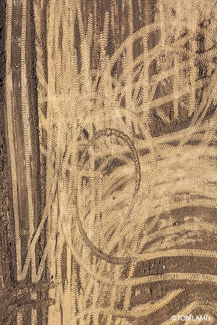 , 'Earthworks,' 2015, Forest & Ocean Gallery