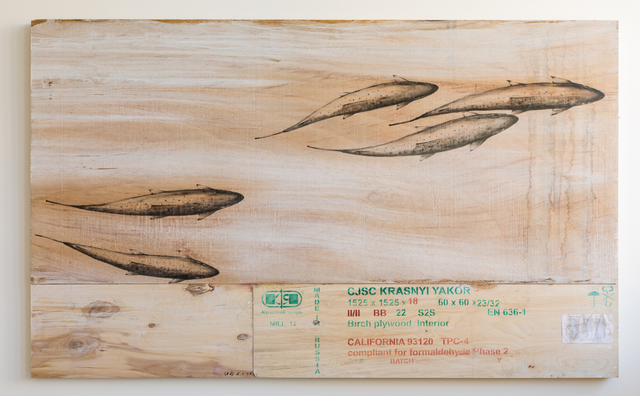 , 'EDNA: Salmo salar (Atlantic Salmon) #3,' 2018, Mark Moore Fine Art