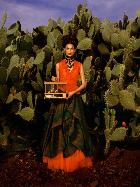 , 'Frida Kahlo Story, 'Birdcage,' Marrakech, Morocco,' 1998, Holden Luntz Gallery