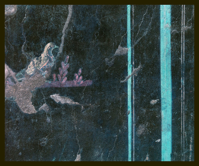 Axel Hütte, 'Ephesos, Terrace Houses (Vogel/Bird 13)', 2018, Galerie Nikolaus Ruzicska