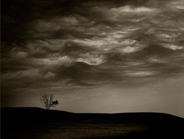 Jack Spencer, 'Cloud/Tree, South Dakota,' 2007, Contessa Gallery