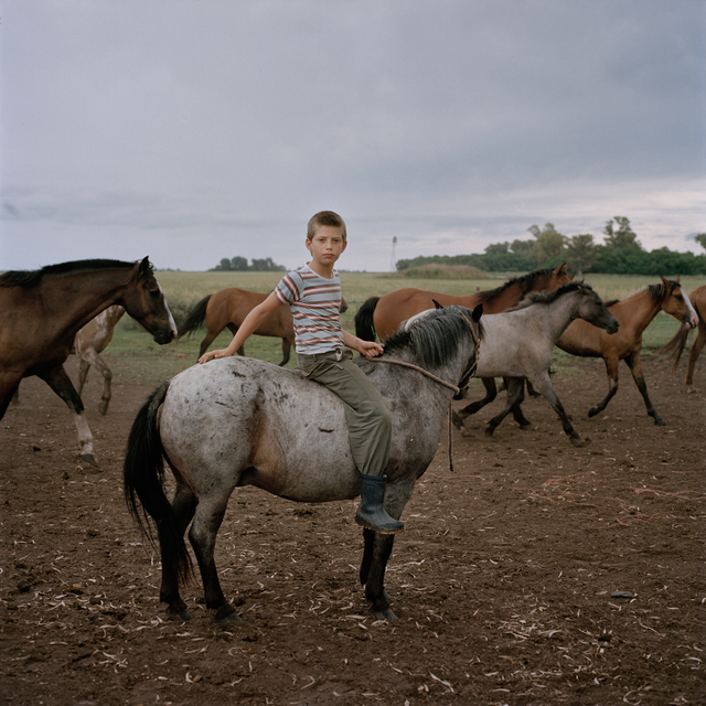 , 'Boy on a Horse,' 2014-2016, Francesca Maffeo Gallery