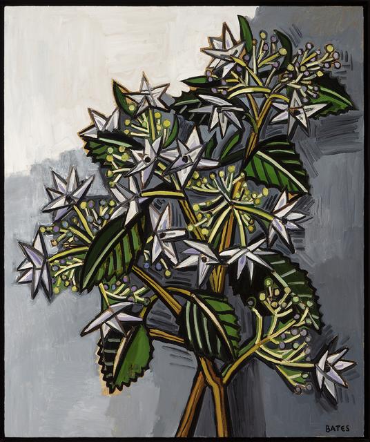 , 'Shooting Star Hydrangea,' 2017, Talley Dunn Gallery