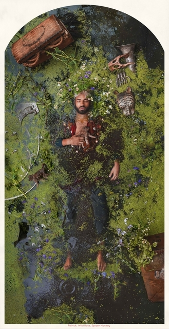 , 'Patrik Wild Rose Spider Monkey,' 2015, The Schoolhouse Gallery