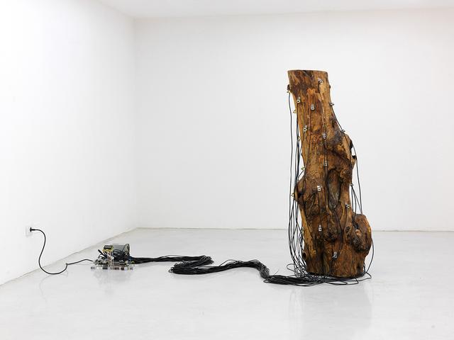 , 'Critici ostinati ritmici,' 2010, Studio la Città