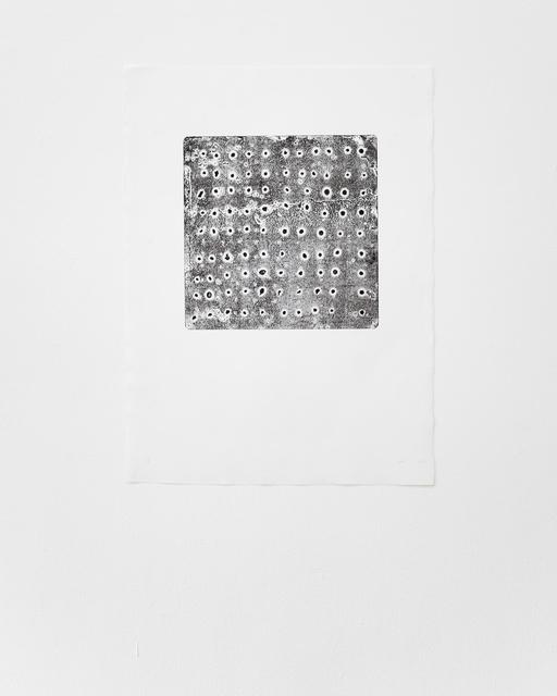 Sheroanawë Hakihiiwë, 'Tipikiwë', 2013, ABRA