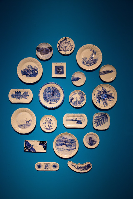 Hazel Lim, 'A Botanical and Wildlife Survey – Singapore', 2013, Installation, Porcelain plates with drawings, student journals and video. Video duration 10:00 mins, Singapore Art Museum (SAM)
