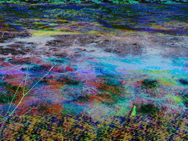 , 'Dryden Lake,' 2014, Spotte Art