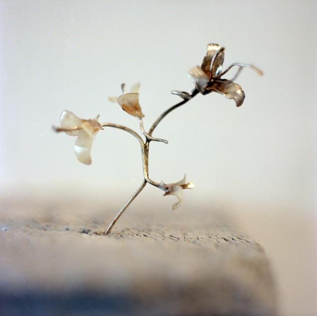 , 'Lillies ,' 2014, GALLERYSKE