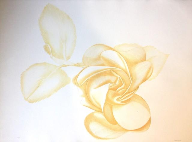 Giacomo Porzano, 'Yellow Rose', 1972, Wallector