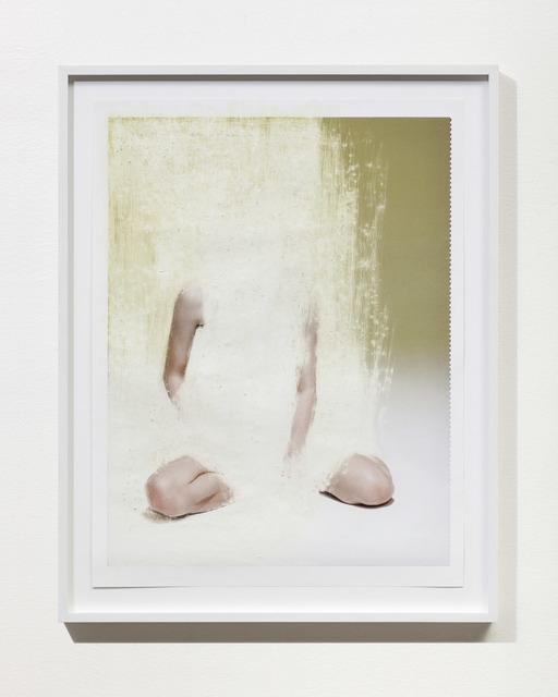 , 'Porpoise,' 2014, Anat Ebgi