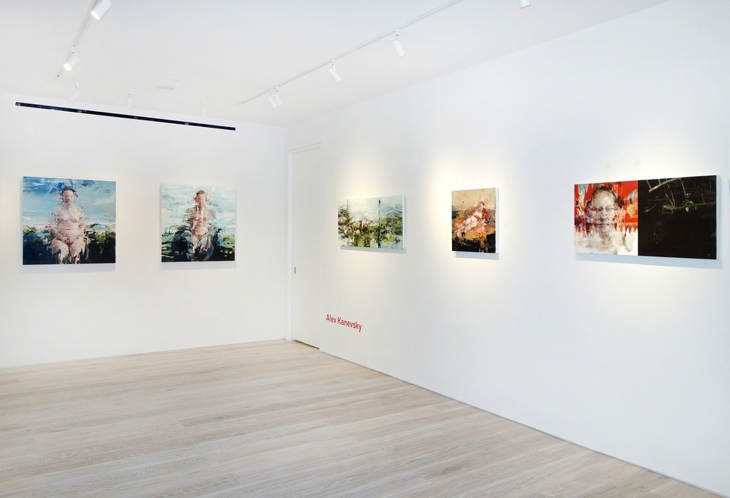 """In Focus: Alex Kanevsky"" - Installation view"
