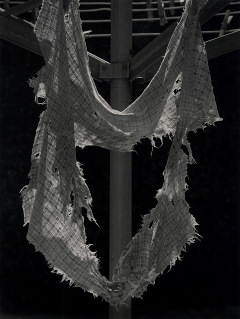 , 'Rag,' 1971, Photography West Gallery