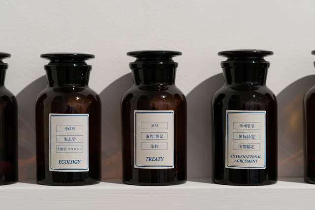 , 'On Translation: The Pille,' 2014, Galería Joan Prats