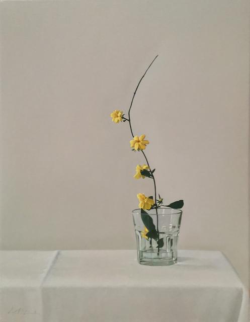 , 'Flores encontradas,' 2016, Praxis