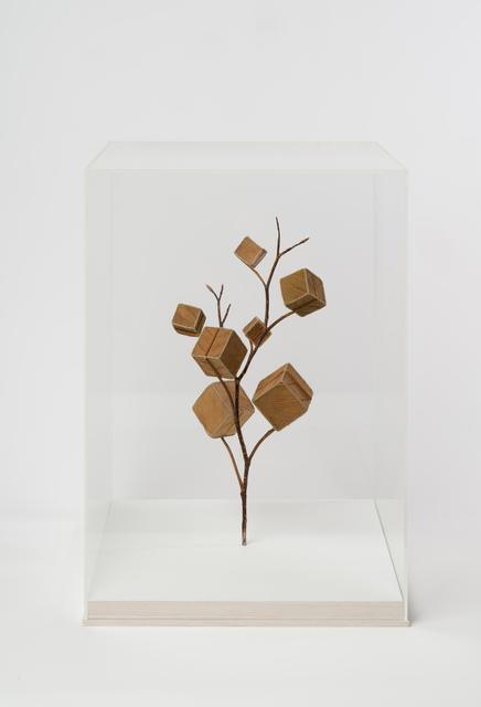 Susanna Bauer, 'Cube Tree No. 7', 2019, Le Salon Vert