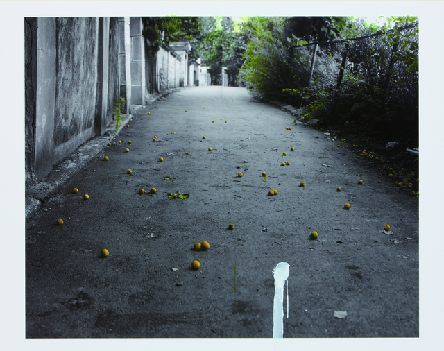 , 'The House - Apricot,' 2010, ONE AND J. Gallery