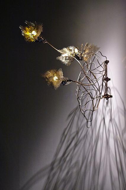 , 'Ala Aureus Insula,' 2017, Metaphysical Art Gallery