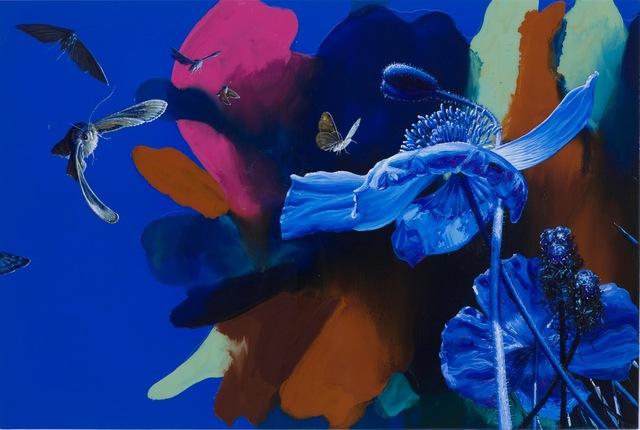 , 'Ultra Violette,' 2009, Galeria Senda