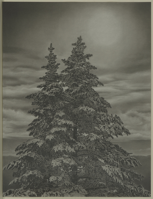 , 'Twin Spruce,' 2016, Garvey | Simon