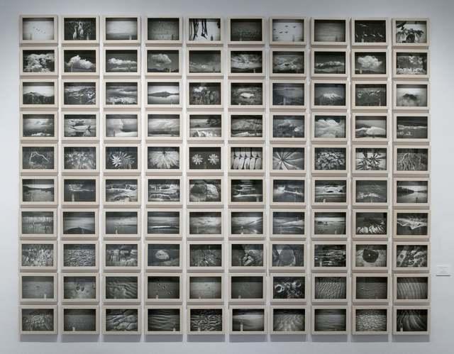 , 'Memorias de cristal II,' 2011, Terreno Baldío