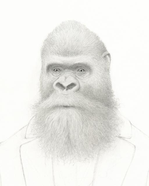 Travis Louie, 'Bearded Gorilla', 2016, William Baczek Fine Arts