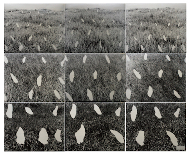 , 'STREAM '79,' 1979, Yumiko Chiba Associates