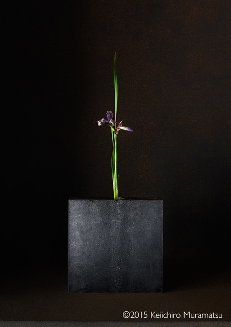 , 'A Stage Iris 3-1,' 2015, Galerie Marie-Robin