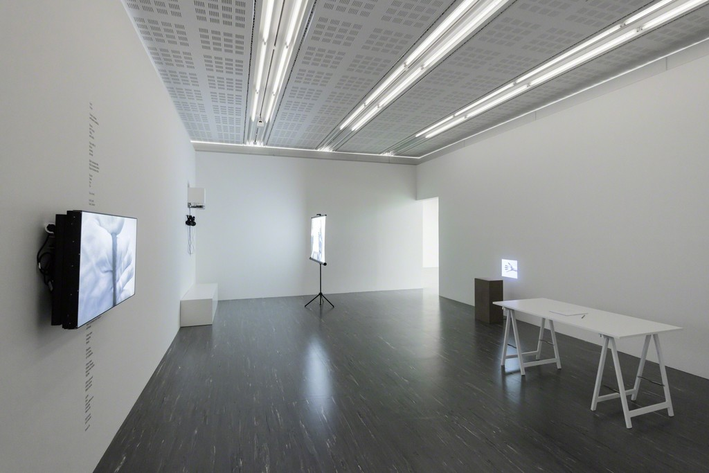 Exhibition View The Grasping, 21er Raum, Photo: © Belvedere, Vienna