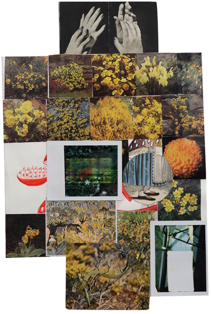 , 'Goldenrod,' 2016, LaCa Projects